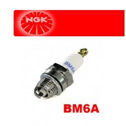 SPARK PLUG  NGK  BM6A